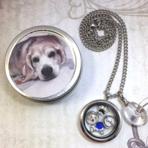 Pet Memorial And Cremation Urn Locket Necklace 9