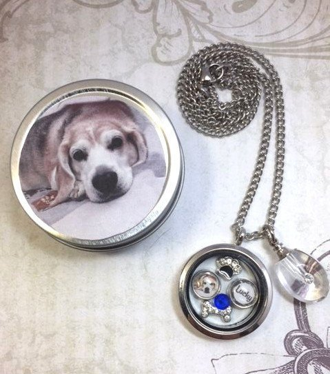 Pet Memorial And Cremation Urn Locket Necklace 1