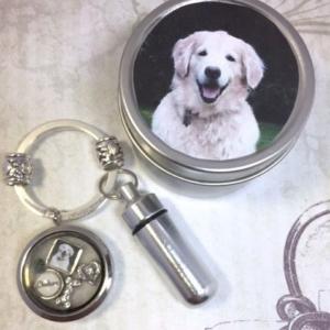 Pet Memorial Cremation Key Ring And Locket 14