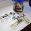 Pet Memorial Cremation Key Ring 6